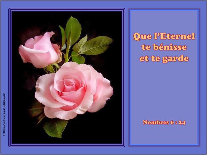 Que l'Eternel te bénisse et te garde - Nombres 6 : 24