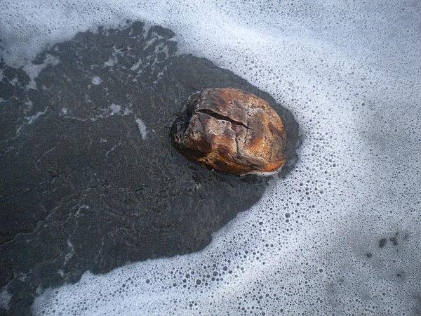 Madinina janvier 2011 187