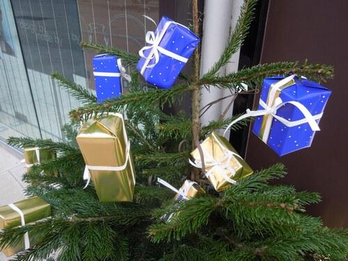 Les sapins de Noël  1