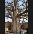 Carnet de voyage : Stage de percussions au Sénégal