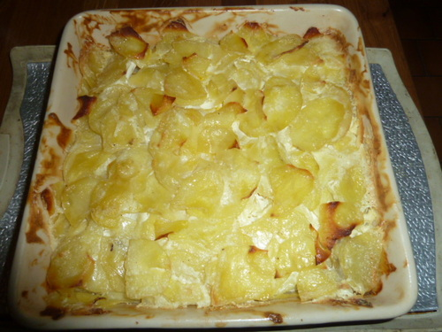 Le plat d'icioula : le gratin dauphinois !