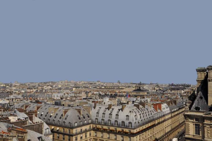DSC2741-mgalweb toits de Paris de la grande roue