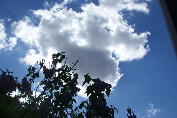quand je regarde le ciel