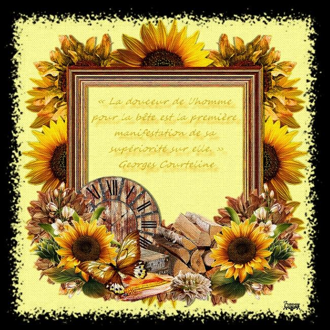 Citations et Proverbes 3 - Citation de