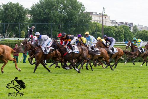 Prix Le Parisien (Wild Risk)