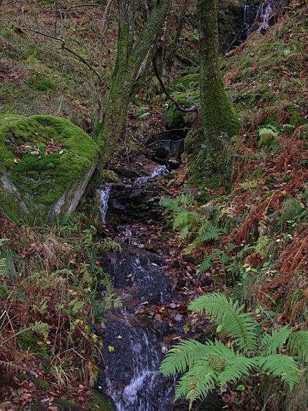 Loch Lomond 37