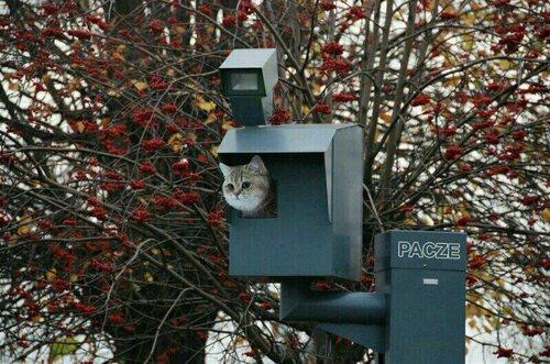 Radar sympa...