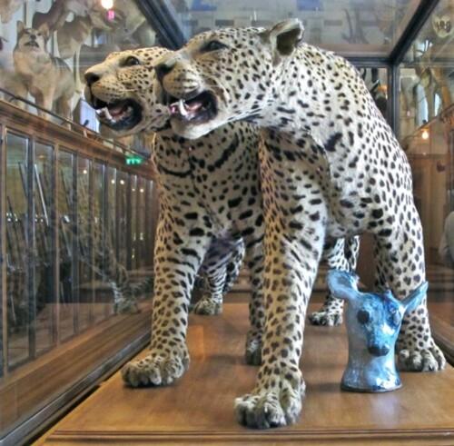 Musée chasse panthères Pétrovitch céramique