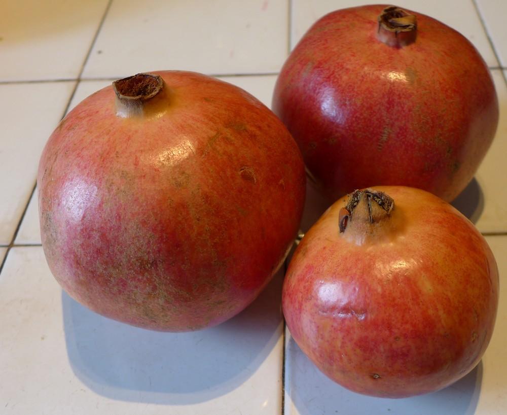 Maouss grenades (fruits) !