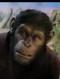 Benoit Allemane doublage francais cesar planete des singes origines