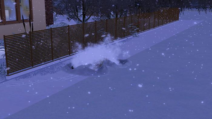 Chapitre 30 : Arrivée de l'hiver