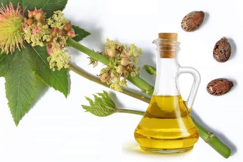 Huile de ricin - Une huile magnifique