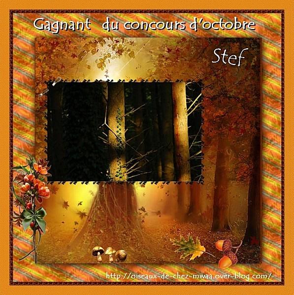 2011-10-31-Scrap gagnant-Stef