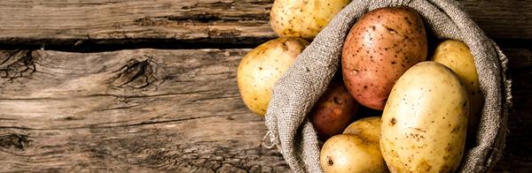 Il n'y a pas de preuves convaincantes en faveur d'une association entre la pomme de terre et le risque d'obésité, de diabète ou de maladies cardiovasculaires.
