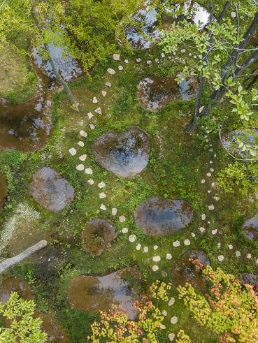 Jardin japonais féérique ...
