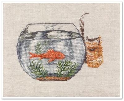 Le chat et le poisson rouge 6