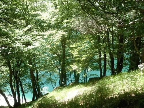 Lac d'Oô + lac d'Espingo (luchonnais) - 31