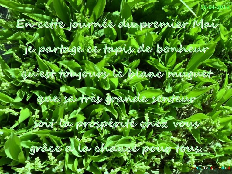 GRUISSAN  VACANCE  09/2011    01/05/2014