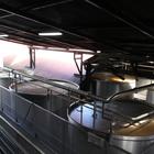 Les cuves de fermentation (2)