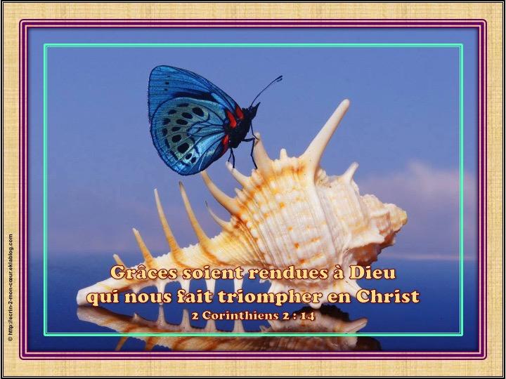 Ronde de douceurs - Alphabet de la bible