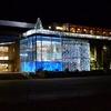 L\'aquarium de Noël de La Rochelle