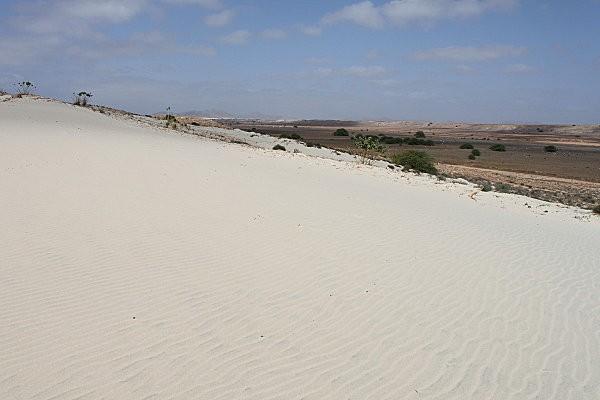 Boa Vista, l'île aux dunes19