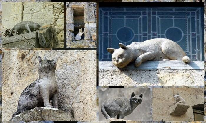 LES CHATS DE LA ROMIEU...............