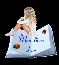 MON LIVRE D'OR