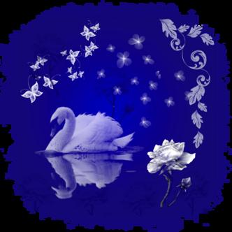 Papier**Belle Nuit**