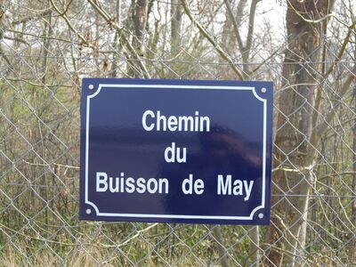 Le Buisson de May