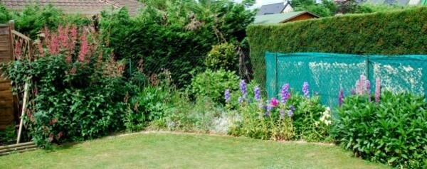 jardin arriere2