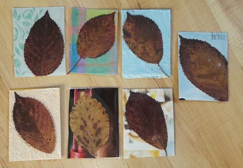 ATC feuilles d'automne