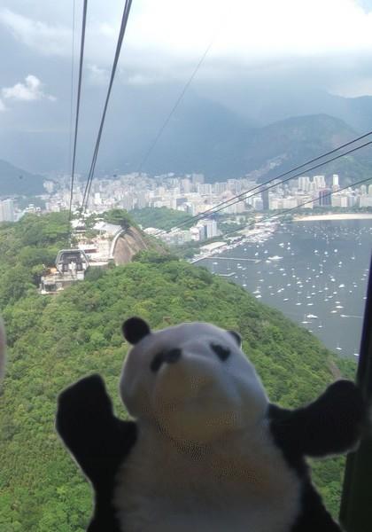 un panda à Rio 034
