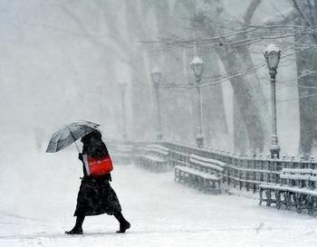 snow-storm