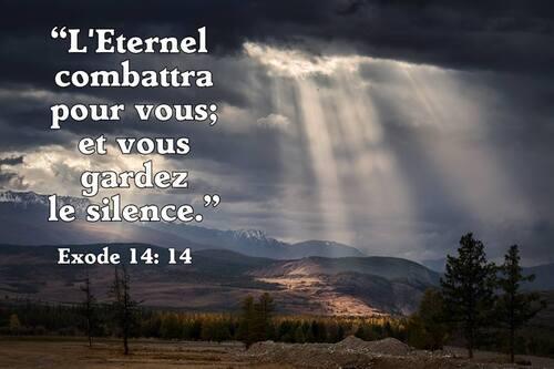 Le salut des âmes, l'œuvre de Dieu