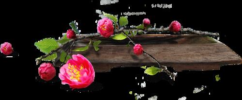 Ornements Floraux Série 40