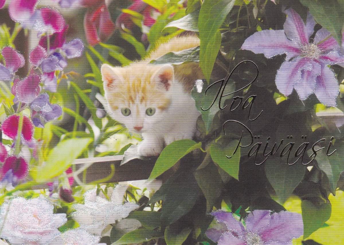 J'adore les animaux alors forcément, j'aime beaucoup cette carte avec ce petit chat. Il ressemble d'ailleurs un peu à mon chat !