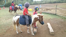l'équitation psychomotrice: c'est quoi?