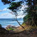 Sur le sentier de randonnée Nord Atlantique - Photo : Yvon
