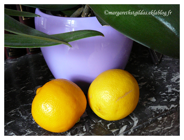 Bergamote et citron - Bergamot and lemon