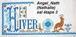SAL Hiver 2016 - 5ème étape