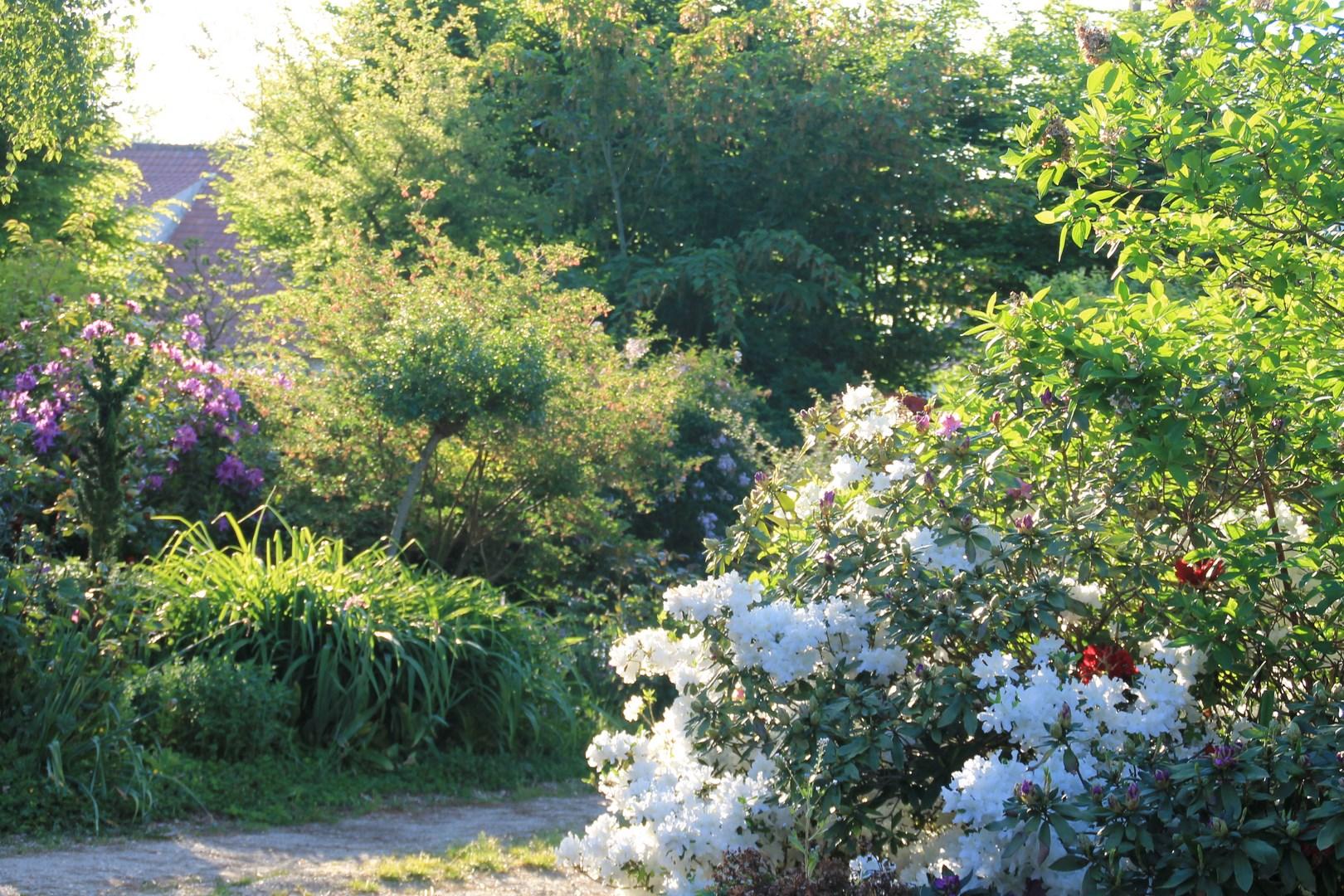 Le jardin au fil des saisons - (page 3) -