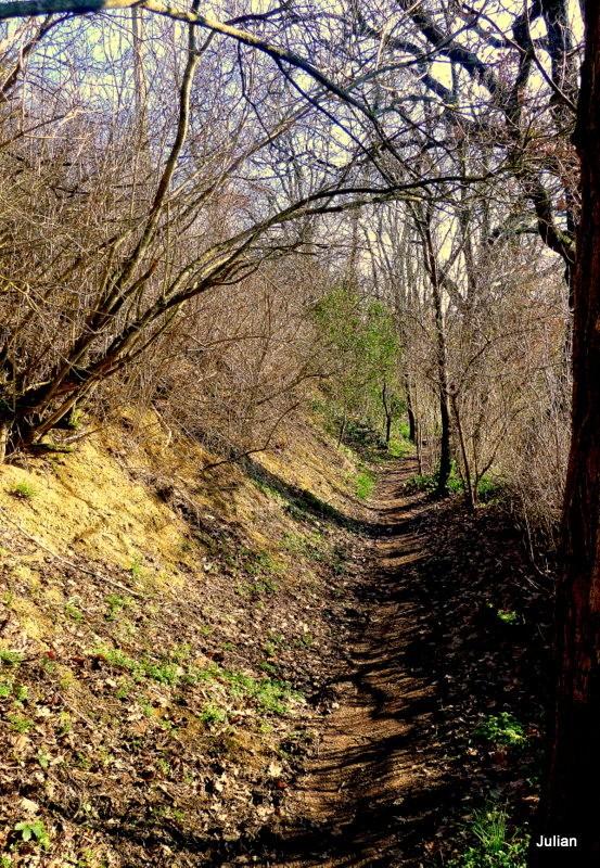 x01 - Sentier