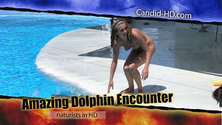 Candid-HD - Amazing Dolphin Encounter.