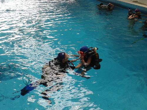 Baptêmes de Plongée JVDM