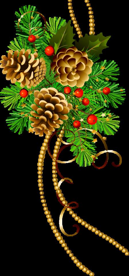 Branches de sapin noël  2019