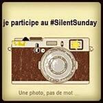 SilentSunday#14
