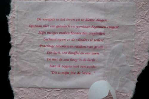 Journées Hellébores chez Het Wilgenbroek