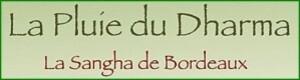 la-pluie-du-dharma