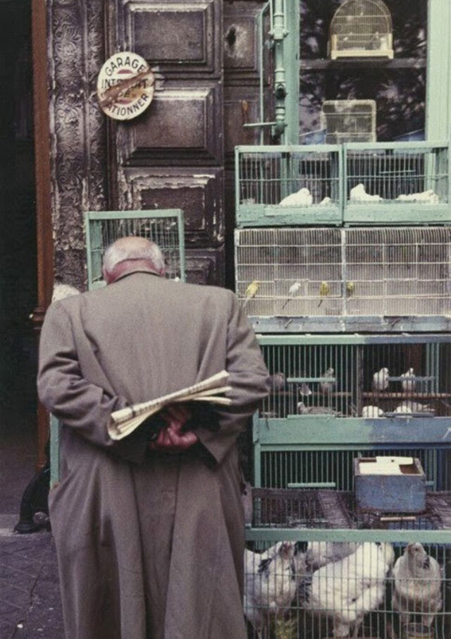 A-Colourful-Look-At-Life-In-Paris-During-1950s-4